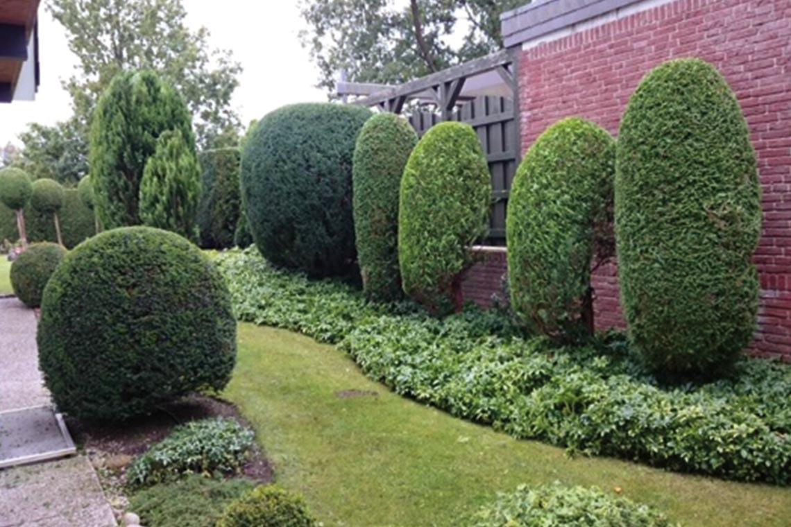Garten- & Grundstückspflege